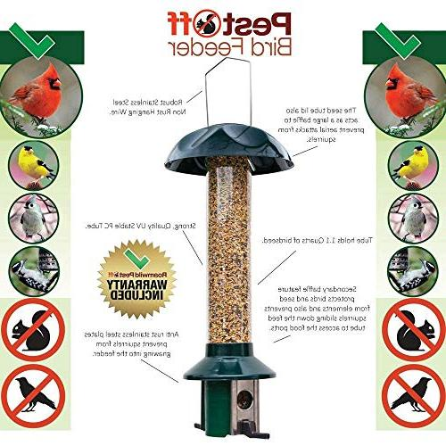 Roamwild Squirrel Proof Wild Seed Sunflower - SEED –