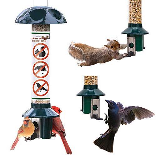 pestoff squirrel proof bird feeder