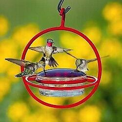 Couronne Co Red Hanging Sphere Hummingbird Feeder with Perch