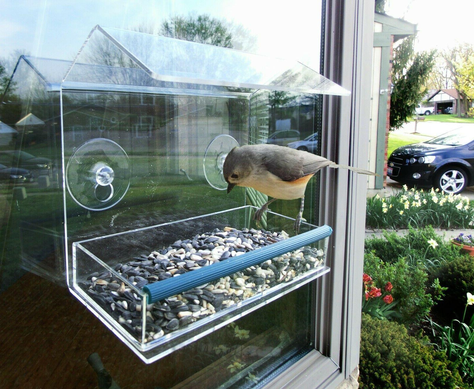 removable tray clear acrylic window bird feeder
