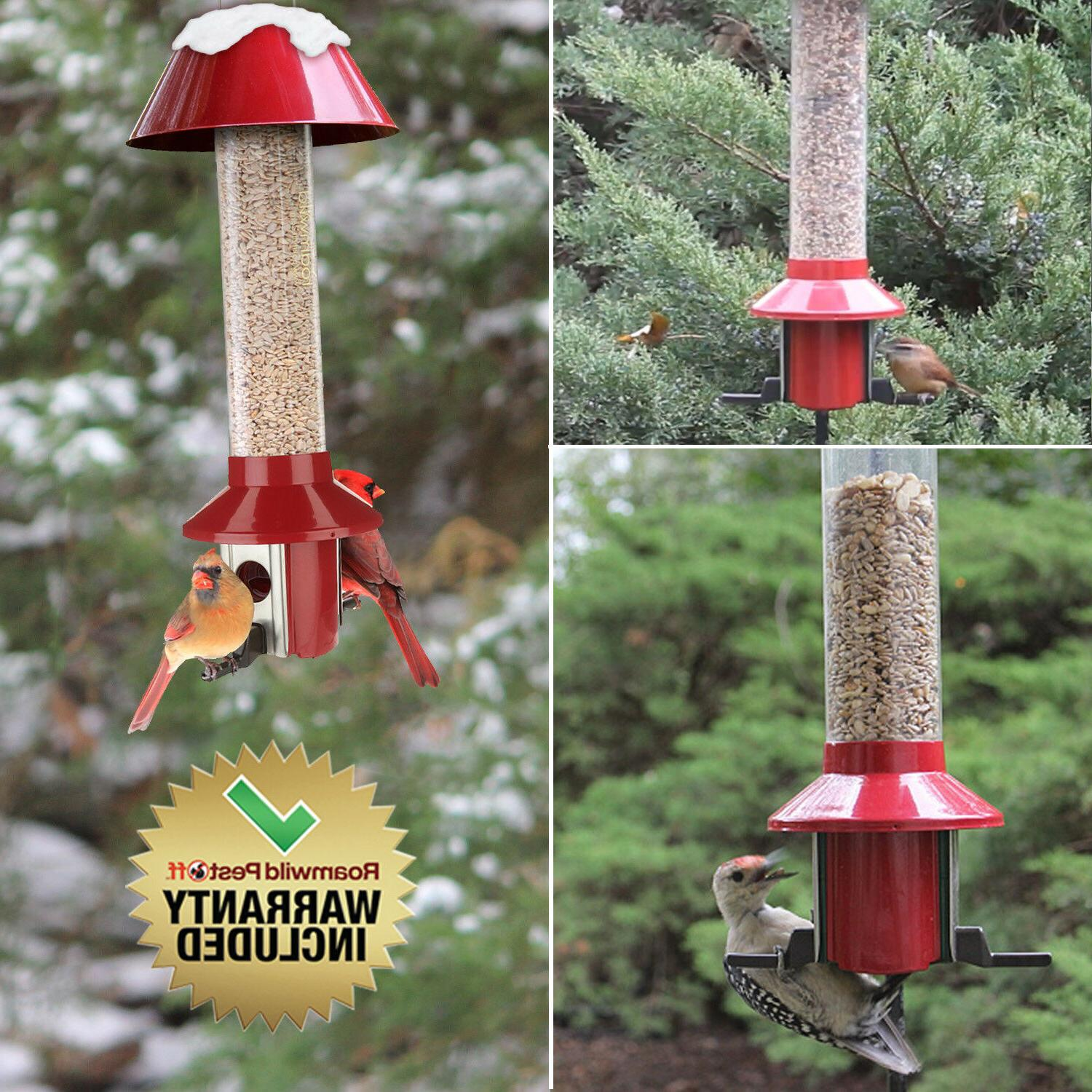 Roamwild Red Squirrel Proof Bird Feeder Mixed Seed