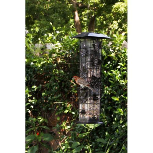 New Squirrel-Be-Gone Squirrel Bird Feeder 2 lb Capacity Ports