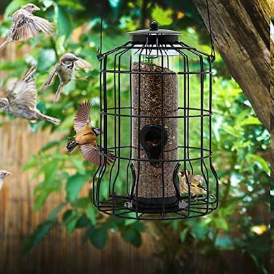 Squirrel Hanging Metal Durable