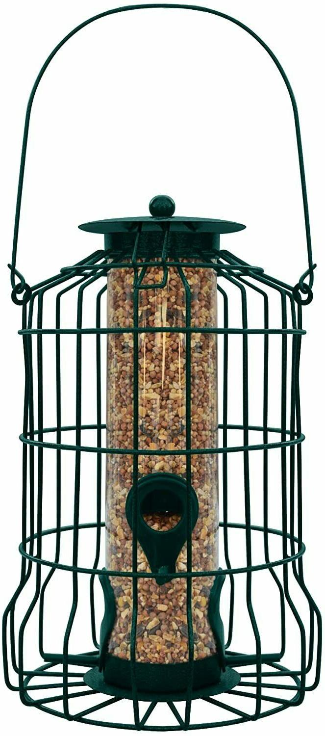 Squirrel Hanging Seed Outdoor Small Wild Yard