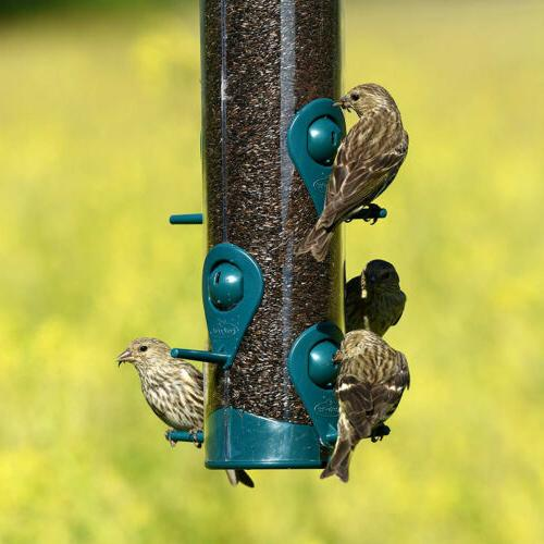 SQUIRREL WILD BIRD FEEDER Seed Hanging Port