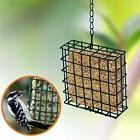 Squirrel Proof Wild Hanging Bird Feeder Seed Garden Outdoor