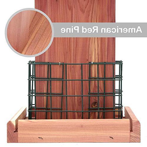 Homes Suet Bird Double Woodpecker Hummingbird #G-8471