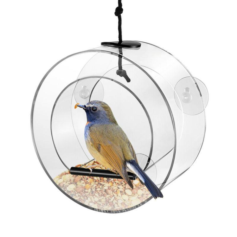 Bird Feeding Decor