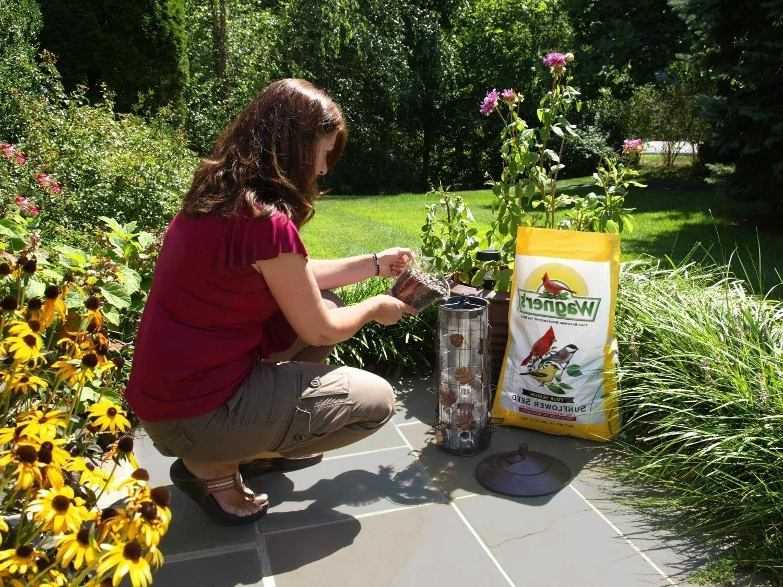 Wagner's Oil Sunflower Seed Wild Bird Food,
