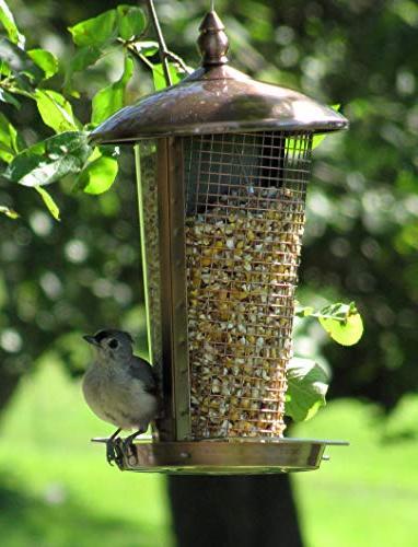 Wild Bird Feeder More Birds Garden Decoration, Feeders for Birds and Medium to Bird Included Great Gift Idea! Copper