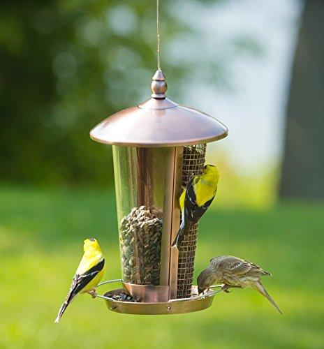 Wild Bird Feeder More Garden Decoration, Feeders Small and Easy to and Bird Great Gift Idea!