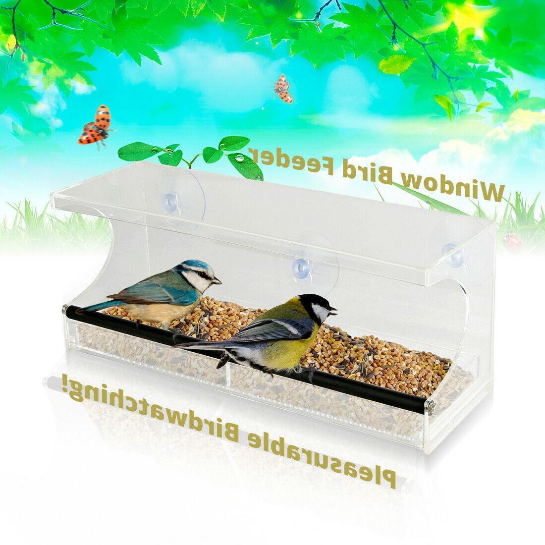 window bird feeder 3 suction