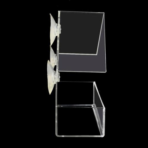 Window Bird Wild Table Suction Clear RU