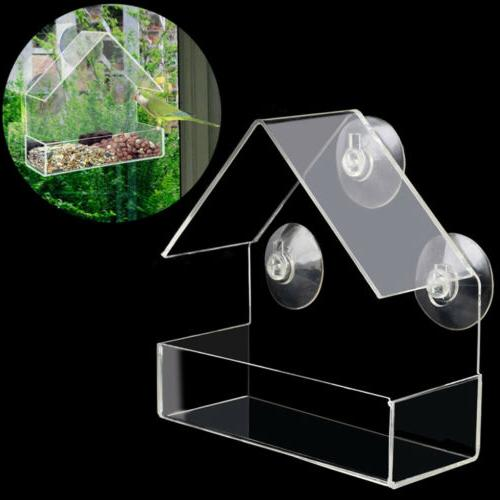 window bird feeder wild table hanging suction