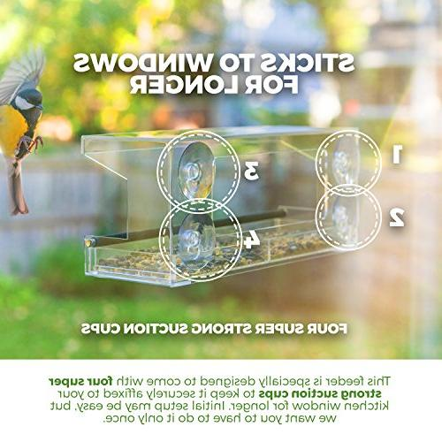 Wild Window Bird Feeder with 4 Strong Cups Tray, Easy Outdoor Feeders, View Close of Finch, and
