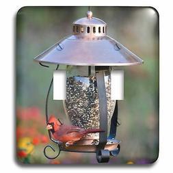 3dRose lsp_208643_2 Northern Cardinal On Copper Lantern Hopp