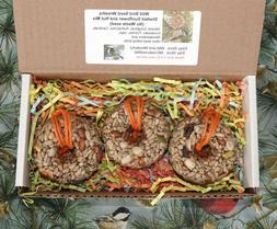 Mini Donuts, Bagels, Bird Seed Feeder Ornaments Wreaths - Se