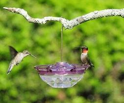 Aspects Mini HummBlossom Hummingbird Feeder, Plum, 434