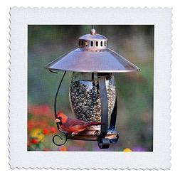 3dRose Northern Cardinal on copper lantern hopper bird feede