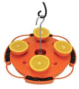 Songbird Essentials Oriole Bird Feeder Combination 3 in 1 Fe