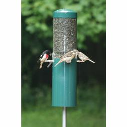 Birds Choice Squirrel Proof Bird Feeder with Baffle and Pole