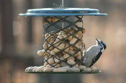 Birds Choice XWPF Magnet Mesh 2 Quart Whole Peanut Feeder